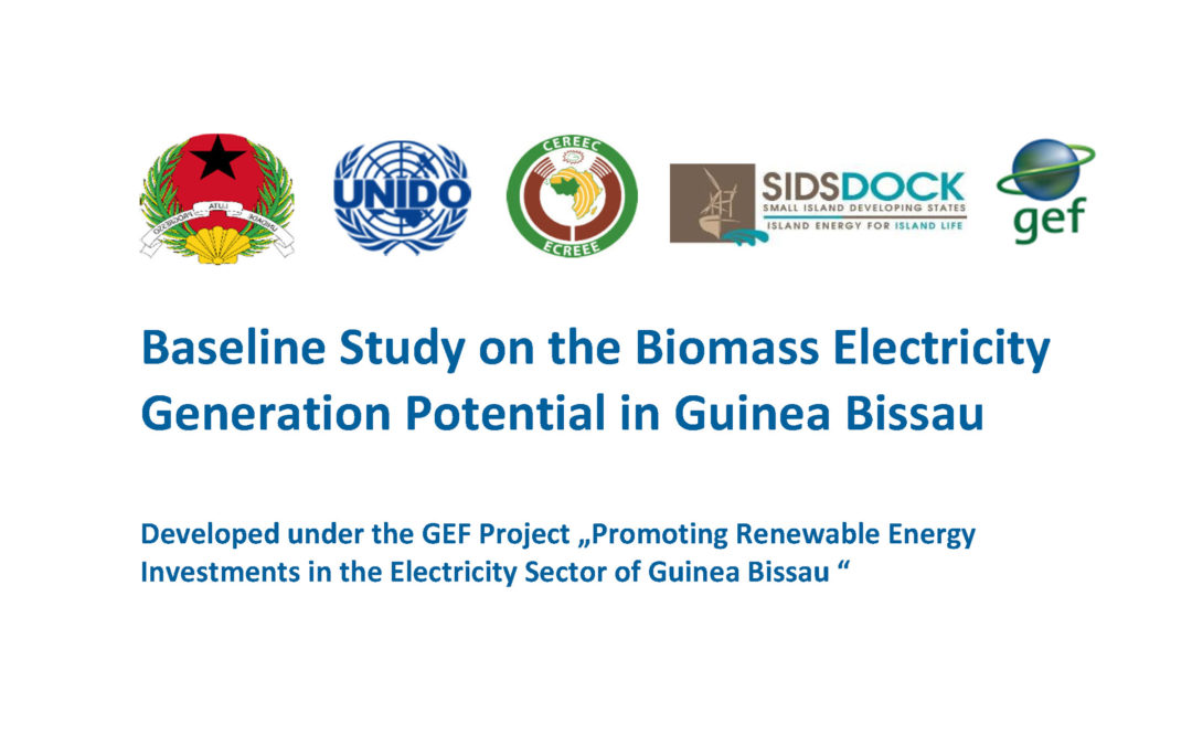 Baseline Study on the Biomass Electricity Generation Potential in Guinea Bissau