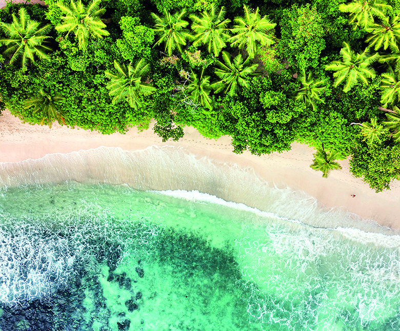 Conservation finance: Seychelles' troubled waters